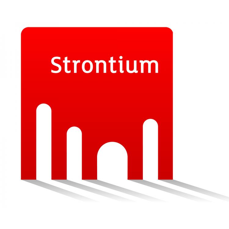 Karta pamięci typu microSD Strontium 2GB