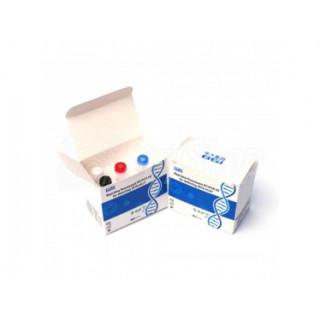 Laboratoryjny test genetyczny na koronawirusa SARS-CoV2 BGI RT-PCR