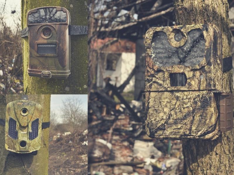 Fotopułapki do ochrony lasu