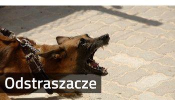 Odstraszacze psów