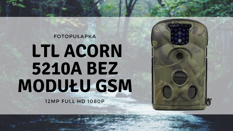Fotopułapka firmy LTL Acorn do monitoringu zwierząt
