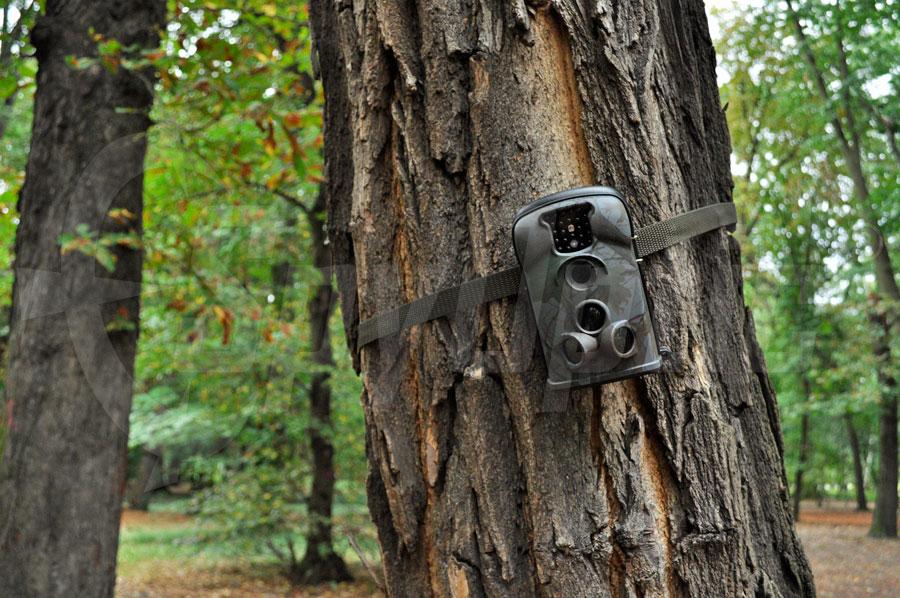Kompaktowa kamera leśna do ochrony lasów
