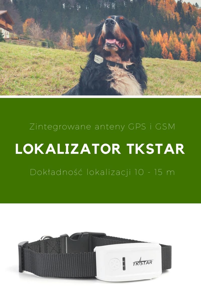 Skuteczny lokalizator GPS dla psa myśliwskiego
