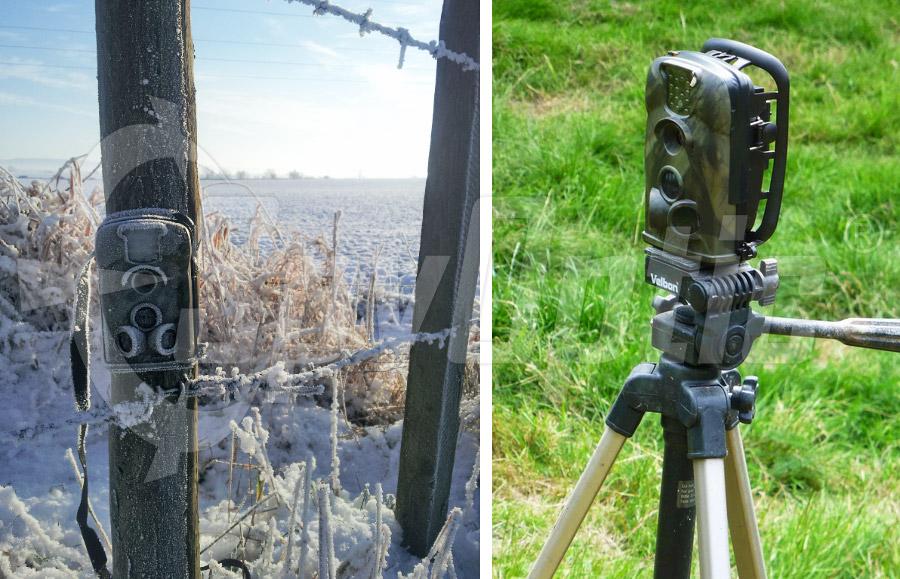 Fotopułapka firmy LTL Acorn TV-5210MG do kontroli lasów i pasiek