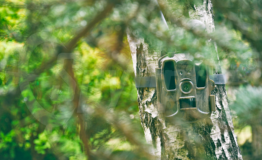 Kamera do monitorowania nęciska Wildguarder 4G LTE GPS