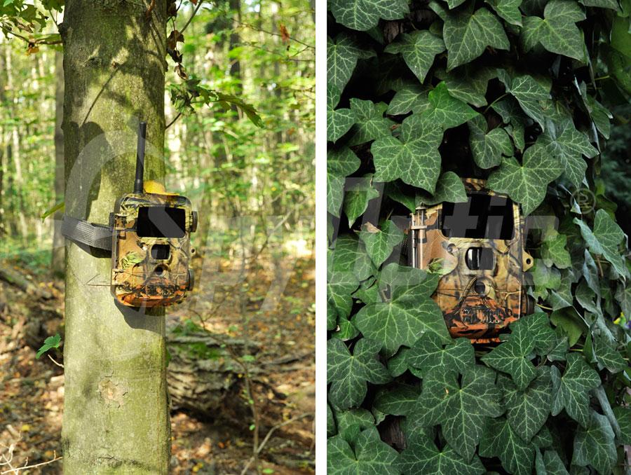 Kamera leśna z opcją zdalnego sterowania