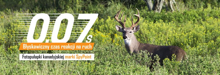 Fotopułapki marki SpyPoint do monitoringu lasu