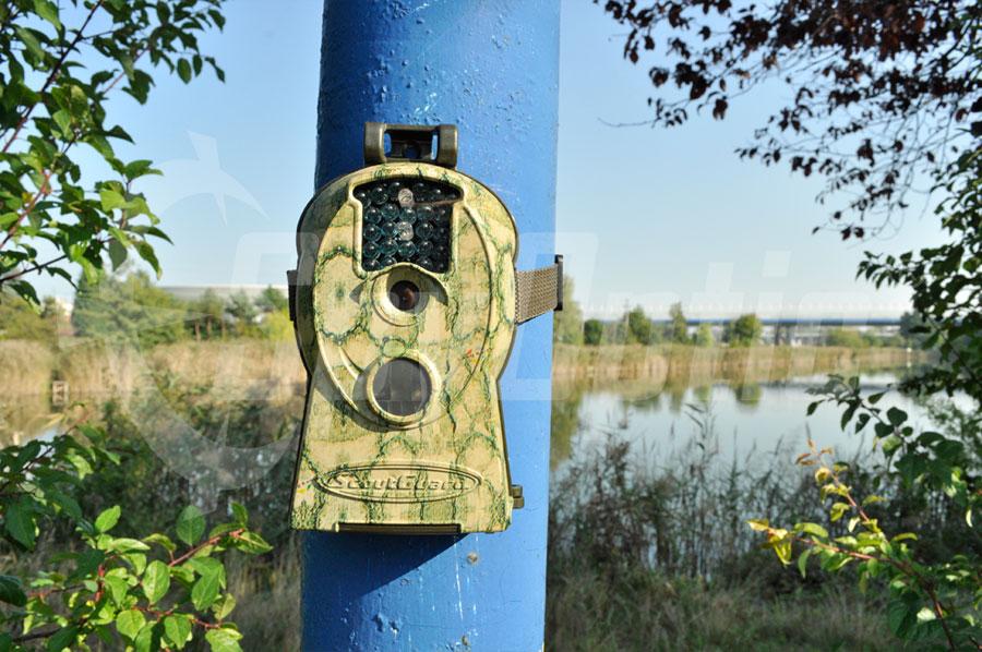 Kamera leśna do ochrony stawów i pasiek