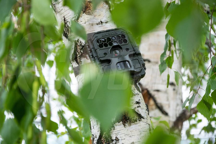 Kamera leśna Reconyx HP2X Hyperfire 2