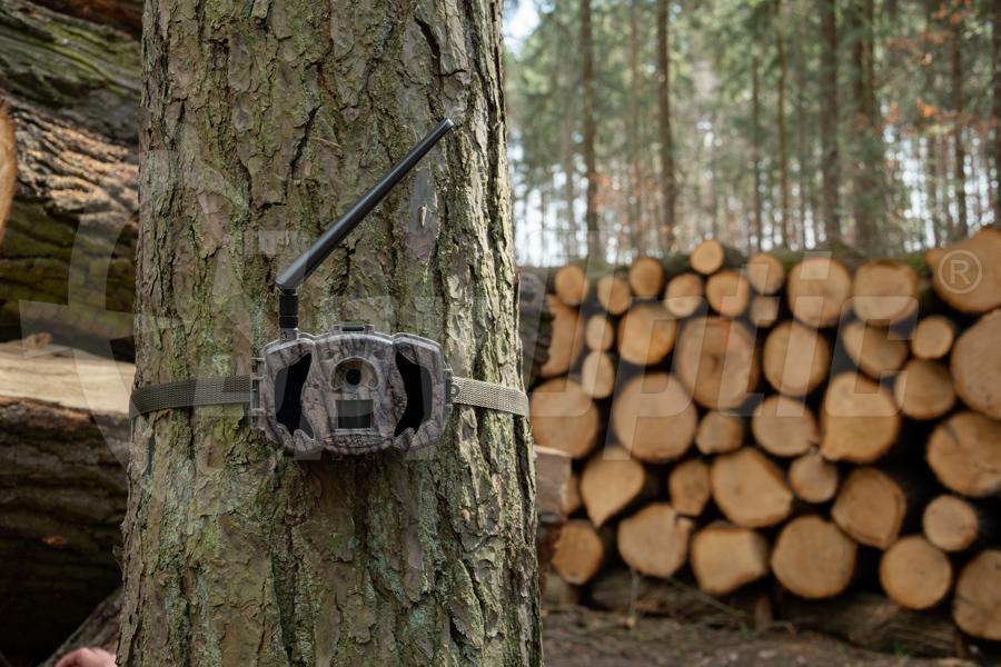 Fotopułapka do lasu TV-9840MA niewidoczne diody