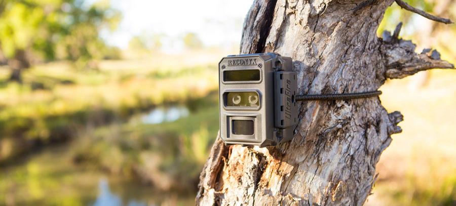 Fotopułapka dla nadleśnictw Reconyx XR6 UltraFire