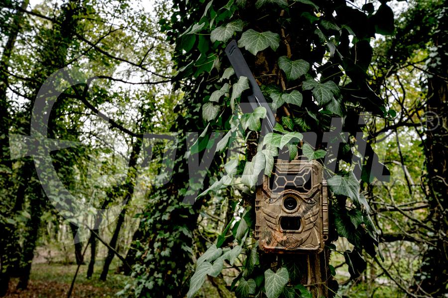 Kamera zewnętrzna WildGuarder Watcher1-4G LTE