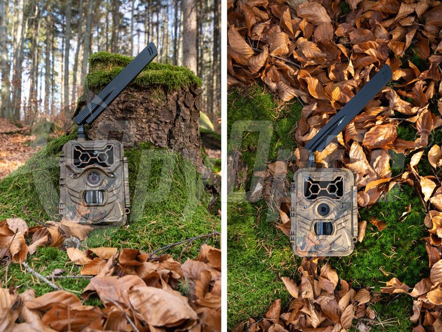 Fotopułapka z modułem GSM WildGuarder Watcher1-4G LTE