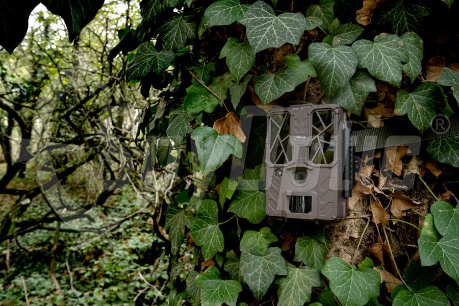 Fotopułapka do lasu SpyPoint Force-20