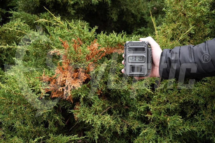 Kamera zewnętrzna do badań dla instytutów Reconyx XR6 UltraFire
