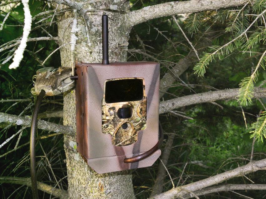 Wzmacniana obudowa do kamer leśnych Covert